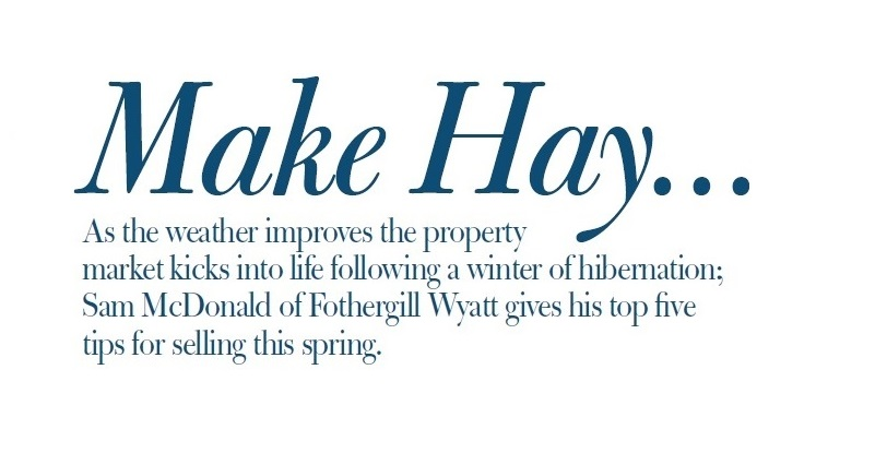 Urban fox article: Make Hay